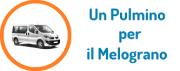 un_pulmino_per_il_melograno.png